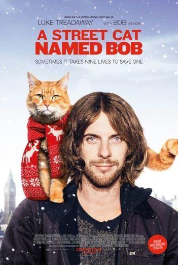 Film Kot Bob i ja A Street Cat Named Bob 2017